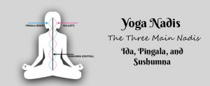 yoga nadis